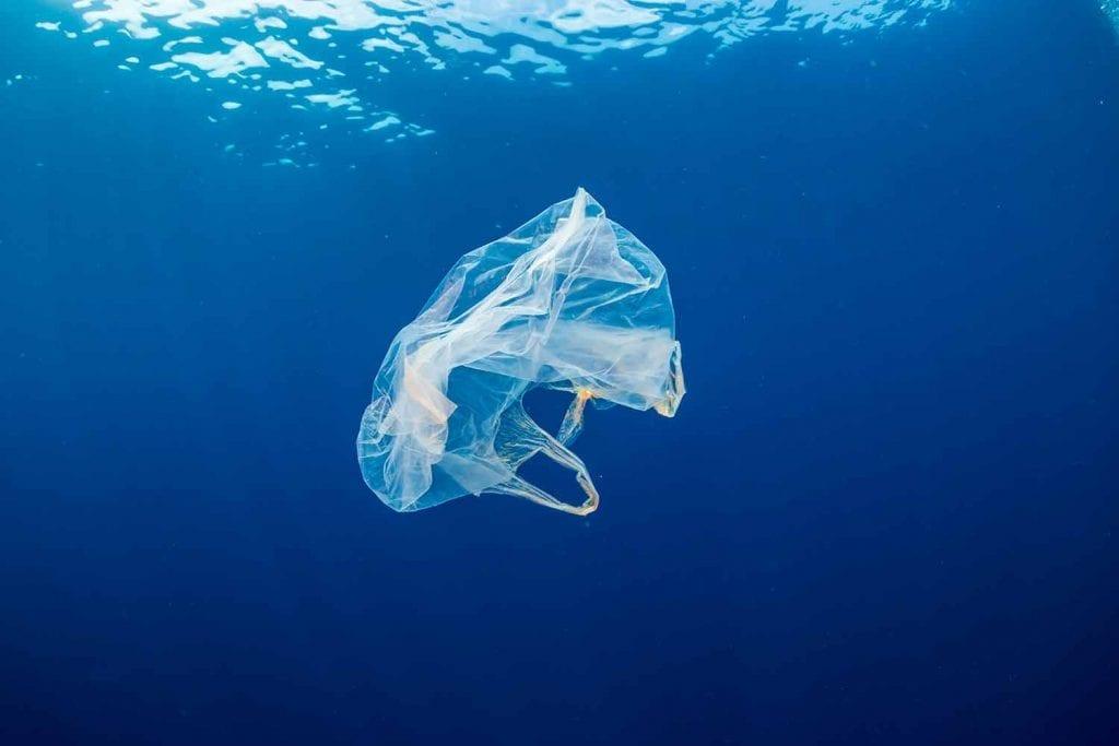 ocean conservation in new environment bill