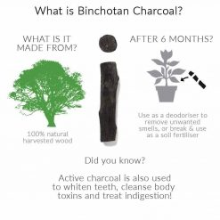charcoal water filter infographic