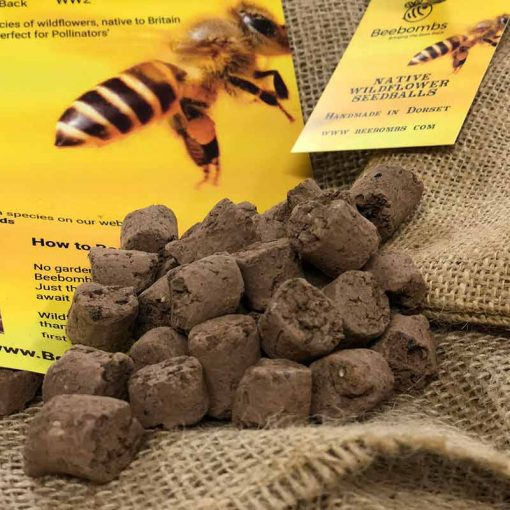 bee bombs wild flower seeds for bees in clay and soil