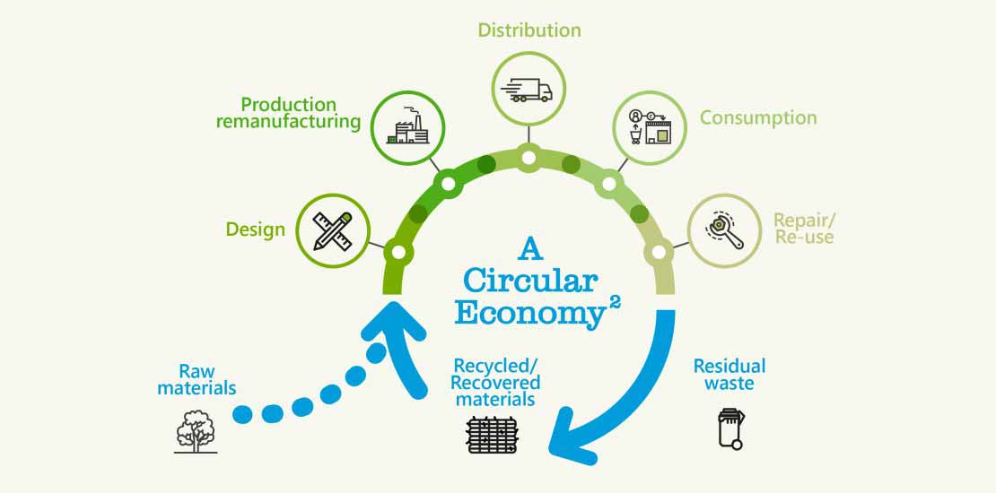 infographic showing the difference between linear economy and the circular economy model