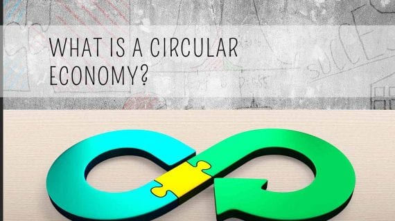 what is a circular economy infographic