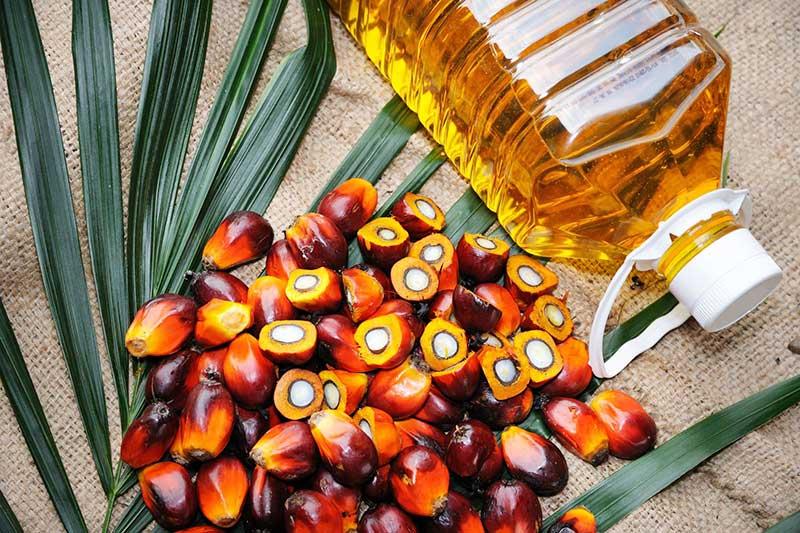 palm oil in bottle