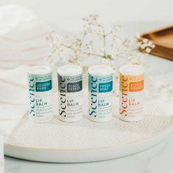 plastic free lip balm in four flavours