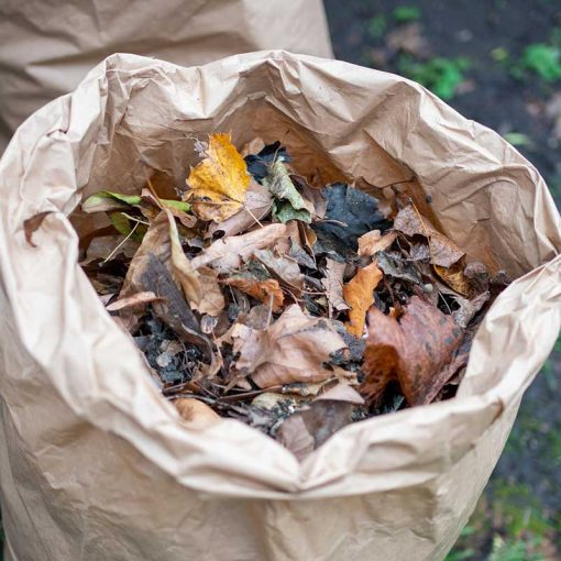 compostable garden waste bags with leaves inside
