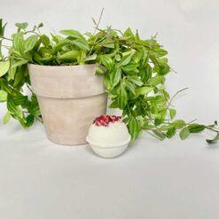 romance bath bomb next to a lant pot