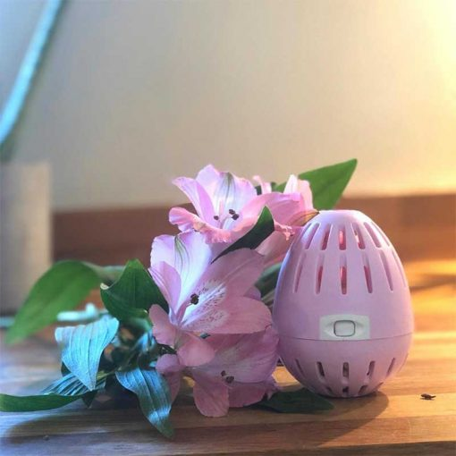 ecoegg laundry egg next to a pink flower